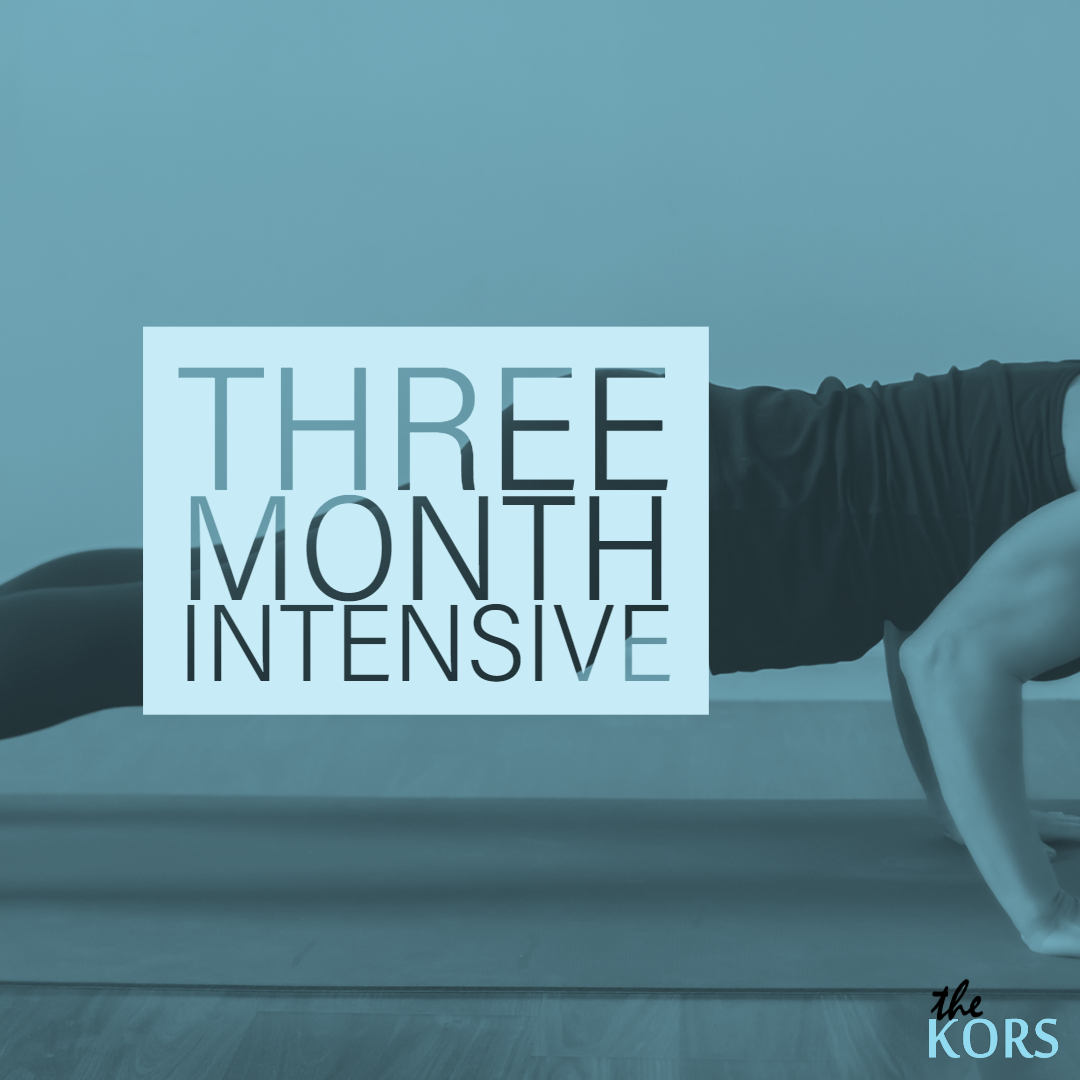 PicturetheKORS weight and Wellness Coaching intensive Package